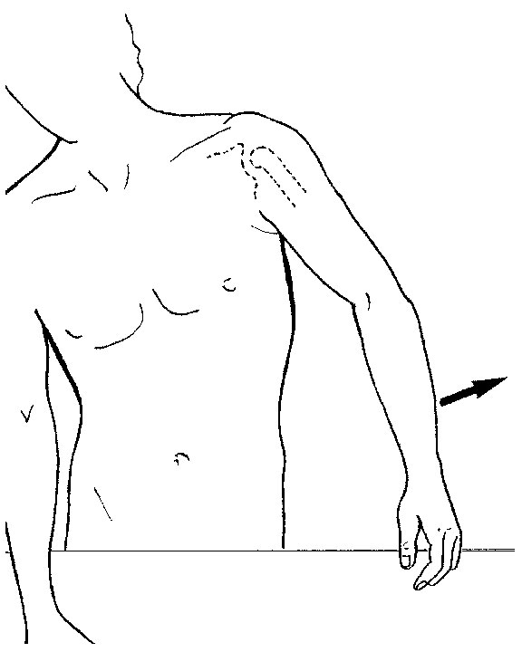 The Scapulohumeral Rhythm - Academy of Clinical Massage