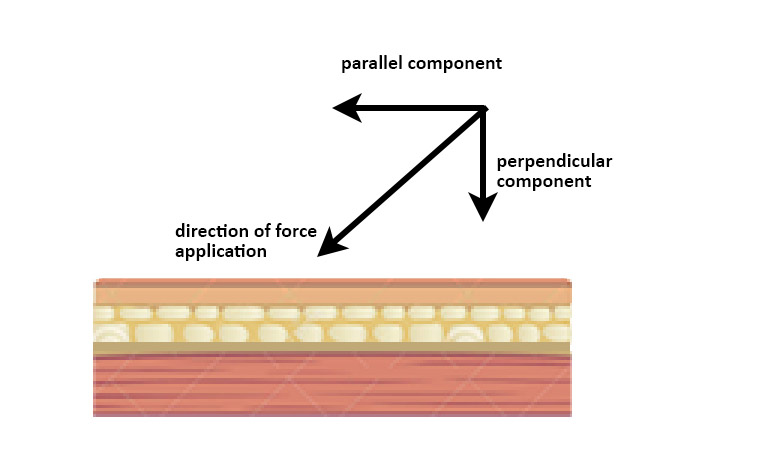 components of force