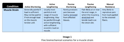 biomechanics chart